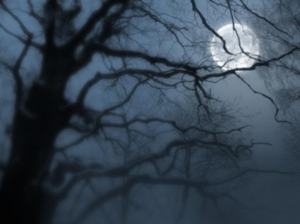 night-moon-fog_30578